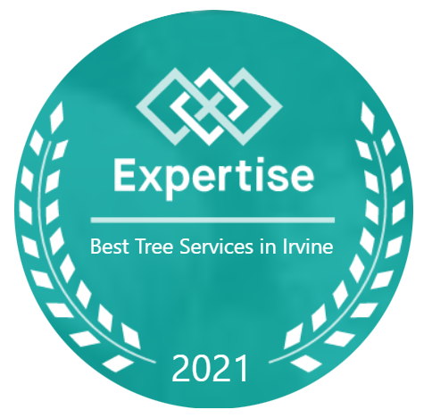Recognized as #1 Best Tree Service Company in Irvine